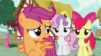 """Scootaloo """"for the first time ever"""" S6E19"""