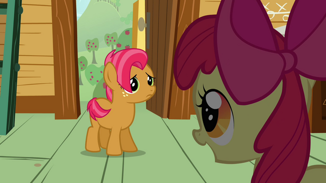 File:Apple Bloom 'and you seem like the perfect candidate' S3E04.png