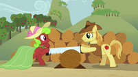 Apple Bottoms and Braeburn sawing a log S3E8