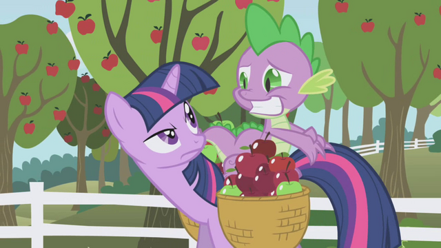File:Twilight frowning at Spike S01E03.png
