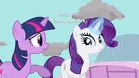 Rarity do you mean S3E13