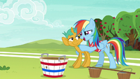 "Rainbow Dash ""with you on the team"" S6E18"