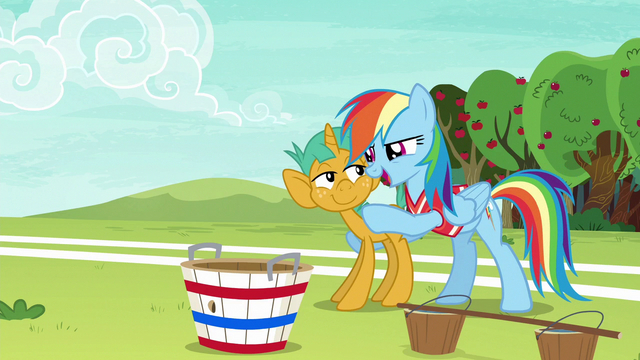 "File:Rainbow Dash ""with you on the team"" S6E18.png"