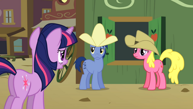File:Twilight speaks to Appleloosans S01E21.png
