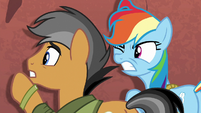 Rainbow and Quibble run into a wall S6E13