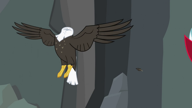File:Bald eagle headless... S2E7.png