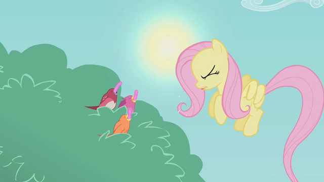 File:Fluttershy disgusted S01E07.png