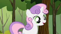 Sweetie Belle 'That's a great, safe idea' S1E23
