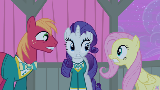File:Big Mac, Rarity and Fluttershy worried S4E14.png