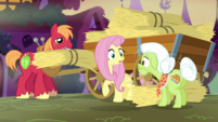 "Fluttershy ""I forgot to stock up on food for Angel"" S5E21"