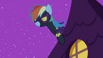 Rainbow Dash looking S2E04