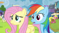 Fluttershy and Rainbow double-take S4E22