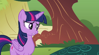 "Twilight ""Where's Maud?"" S4E18"