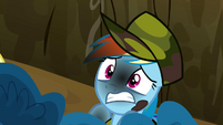 Medium rare Rainbow Dash S2E21