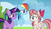 Twilight and Rainbow flattered by Angel Wings S6E24