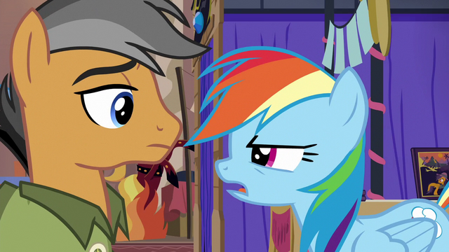 """File:Rainbow Dash """"sorry, Quibble"""" S6E13.png"""