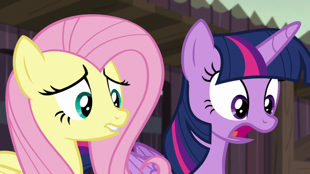 """File:Twilight Sparkle """"but you could be!"""" S5E23.png"""