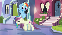 Rainbow Dash looking at local pony S3E1