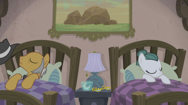 File:Igneous Rock Pie and Cloudy Quartz sleeping S5E20.png
