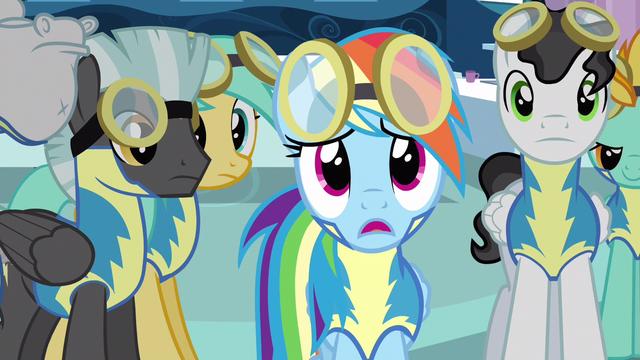 File:Rainbow Dash disbelief S3E7.png