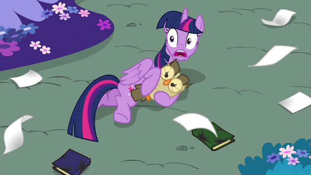File:Twilight shocked S4E26.png