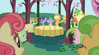 Applejack about to introduce the Apple Family S1E01