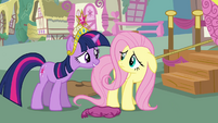 Twilight asks Fluttershy to help Rainbow Dash S03E13