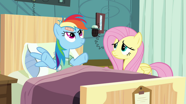 """File:Rainbow Dash """"I've got things to do"""" S2E16.png"""