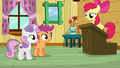 "Apple Bloom ""What do you mean?"" S6E4.png"