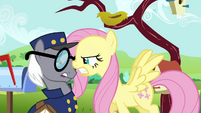 Fluttershy wrong mail S2E19