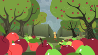 Apples moving towards Applejack S2E01