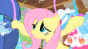 Fluttershy at her closet S01E22