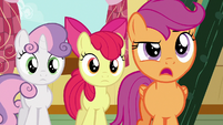 """Scootaloo """"you know what, Gabby?"""" S6E19"""