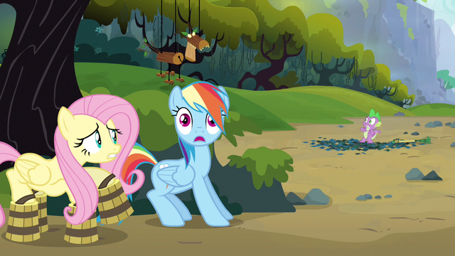 File:Rainbow Dash almost forgot! S3E9.png