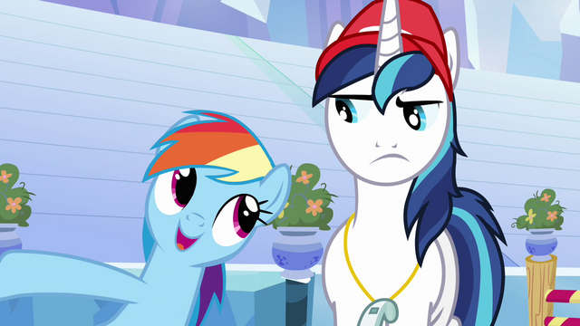 """File:Rainbow Dash and Shining Armor """"she's in charge"""" S03E12.png"""