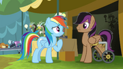 Rainbow offers trade with Stellar Eclipse S4E22