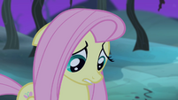 Fluttershy confused S4E07