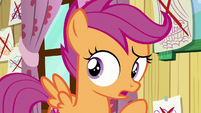 "Scootaloo ""And we always will be!"" S6E4"
