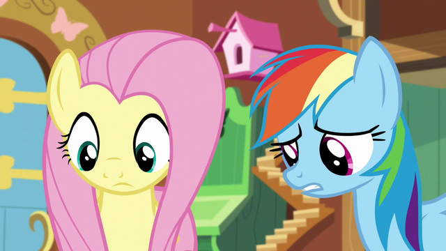 File:Rainbow and Fluttershy looks at Tank S5E5.png