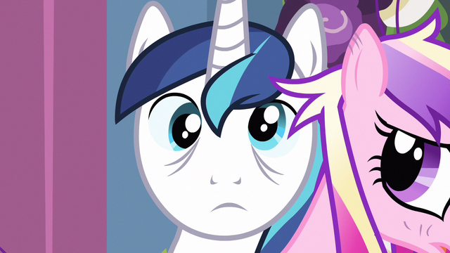 File:Shining Armor cross eyed S2E26.png