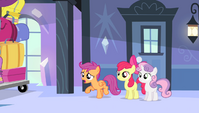 "Scootaloo ""what's going on?!"" S4E24"