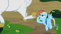 Rainbow 'while you're up there!' S4E10