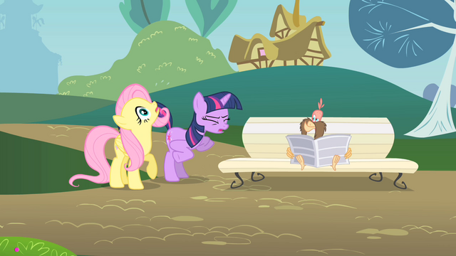File:Twilight and Fluttershy describing Philomena S01E22.png