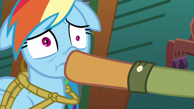 File:Quibble plugs Rainbow's mouth again S6E13.png