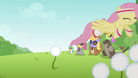 Fluttershy flying through dandelion S2E22