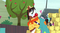 """Trouble Shoes """"just leave me be, cutie mark!"""" S5E6"""