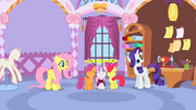 Rarity doubts the CMCs S1E17.png