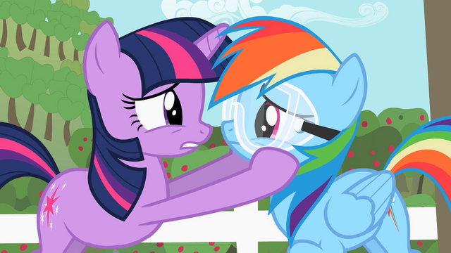 File:Twilights holds Rainbow Dash close to her S2E03.png