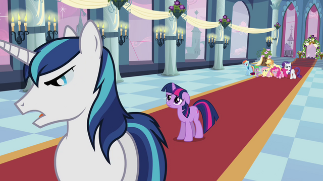 File:Shining Armor cuts off Twilight S02E25.png