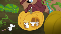 Hooffield stallion picks up pumpkin with mice inside S5E23